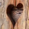 愛情裡的木頭人,其實也不賴